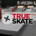 True Skate game and guide download Icon