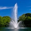 Lake Fountain Live Wallpaper Icon