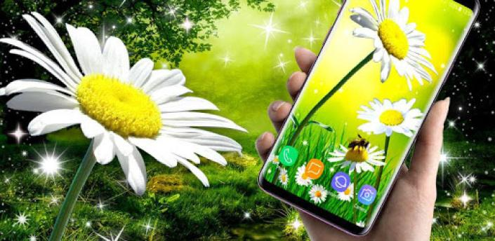 Daisy Parallax Wallpapers 🌼 HD Live Wallpapers apk