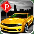 Parking 3D - Car Parking Icon