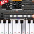 Electronic ORG 2019 - Piano 2019 Icon