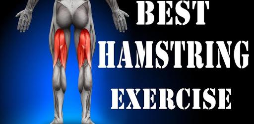 All Hamstrings Exercises apk
