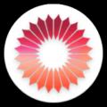 Coronavirus Tracker Icon