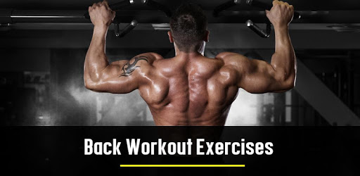 Back Workout Exercises apk