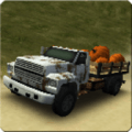 Dirt Road Trucker 3D Icon