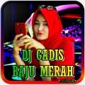 DJ Gadis Baju Merah Viral Tiktok DJ Remix Offline Icon