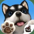 My Dog - Puppy Game Pet Simulator Icon