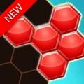 Hexa Block Jigsaw Puzzle 3D Icon