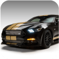 Wallpaper For Cool Mustang Shelby Fans Icon