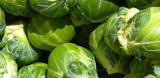 Barsby Produce apk