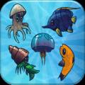Aquarium Pairs Icon