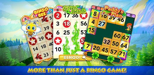 Bingo Blitz™ - Bingo Games apk