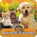 Animal Sounds (sounds and pictures) Icon