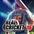 Real Cricket ™ 16 Icon
