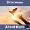 Bible Verses About Hope Icon