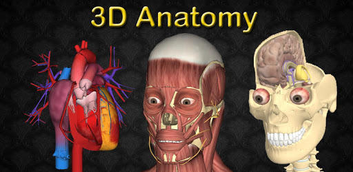 3D Anatomy apk
