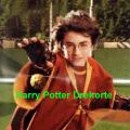 Harry Potter Drehorde Icon
