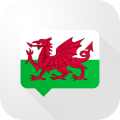 Welsh Verb Blitz Pro Icon