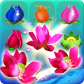 Flower Blast Soda Mania Icon