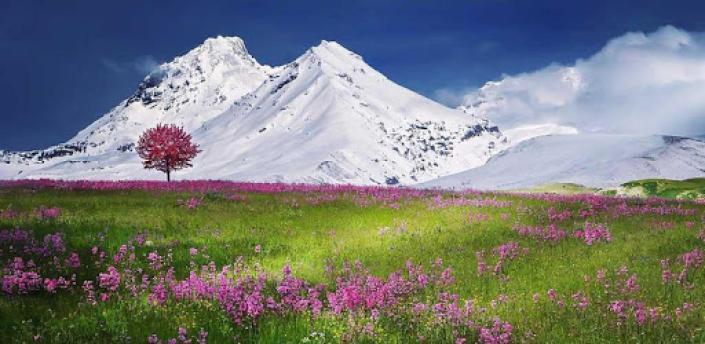 Nature Wallpapers HD apk