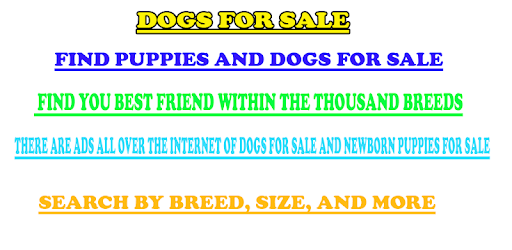 Dogs for sale apk