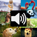 Animal Sounds HD (Free) Icon