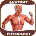 Human Anatomy and Physiology: With Illustrations Icon