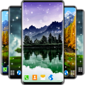 Tree Forest Live Wallpaper Icon