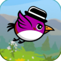 Bird Flop - Endless Flying Adventure Icon