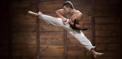 Mastering Taekwondo - Get Black Belt at Home apk