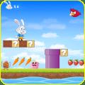 Super Bunny Run Icon