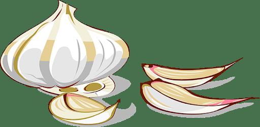 Étel Recept Nyilvántartó apk
