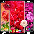 Diamond Rose Live Wallpaper ❤️ Shine HD Wallpapers Icon