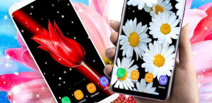 Live Wallpaper ❤️ Themes for Samsung Galaxy S9 apk
