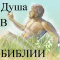 Душа в Библии Icon