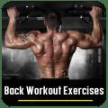 Back Workout Exercises Icon