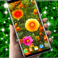 Autumn Flowers 4K Live Wallpaper ❤️ Forest Themes Icon
