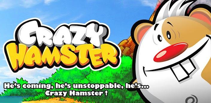 Crazy Hamster apk