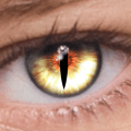 FoxEyes - Eye color changer Icon