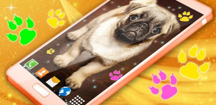 Cute Puppy Live Wallpaper 🐶 Dog Paws Wallpapers apk