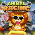 Rush Hour - Animal Racing Icon