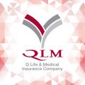 QLM Icon