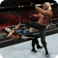 Top WWE 2k Tips Icon