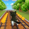 Cat Run 3D Icon