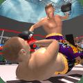 Ninja Fighter Punch Boxing Kung Fu Karate Warrior Icon