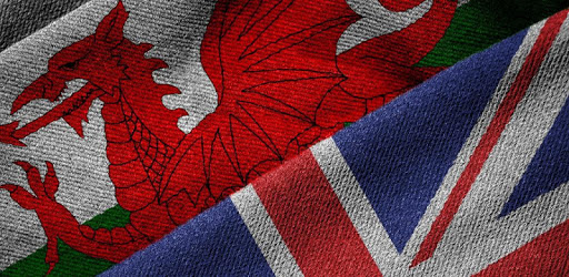 Offline English Welsh Dictionary apk