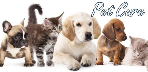 Pet Care apk