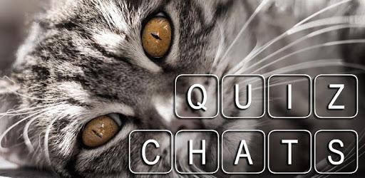 Quiz de culture générale sur les chats apk