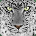 Tile puzzle Wild animals Icon