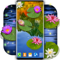 Water Lily Live Wallpaper 🌺 Flowers Wallpapers Icon